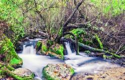 Weg des Majaceite-Flusses zwischen EL Bosque und Benamahoma Lizenzfreies Stockbild