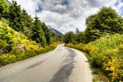 Weg dichtbij Bariloche Royalty-vrije Stock Afbeelding
