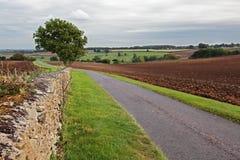 Weg die door landbouwgrond achteruitgaat Stock Foto's