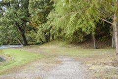 Weg die langs Willow Lake-oever buigen Royalty-vrije Stock Afbeelding
