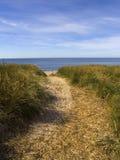 Weg die zandduin kruist aan het overzees Stock Foto