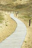 Weg door de duinen Royalty-vrije Stock Afbeelding