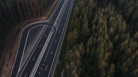 Weg door de groene nette bos, luchtmening stock video