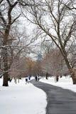 Weg door de Sneeuw op Gray Day Royalty-vrije Stock Afbeelding