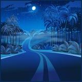Weg door de wildernis bij nacht Stock Afbeelding