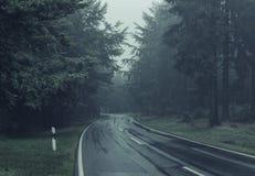 Weg door een Bos stock fotografie