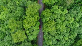 Weg door een bos - luchtmening stock videobeelden