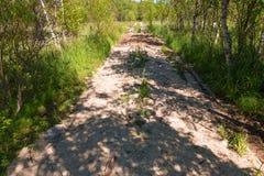 Weg door een moeras op Anzersky-Eiland wordt opgemaakt dat stock afbeelding