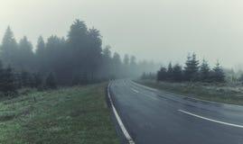 Weg door Forest With Mourning Fog royalty-vrije stock afbeelding