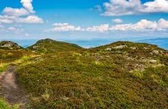 Weg door grasrijke heuvels met rotsen Stock Fotografie
