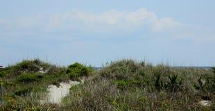 Weg door grassen over zandduinen royalty-vrije stock fotografie