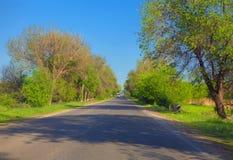 Weg door groene bomen Stock Foto
