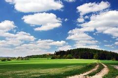 Weg door het de zomerplatteland stock foto
