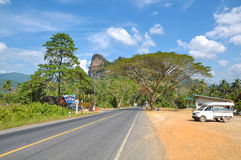 Weg door het regenwoud van Khao Sok Park, Thailand Stock Afbeelding