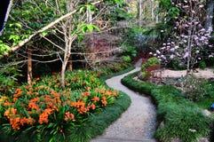 Weg door Japanse tuin in de lente Stock Foto's