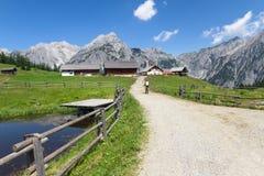 Weg door landelijk berglandschap in de zomer, dichtbij Walderalm, Oostenrijk, Tiro Royalty-vrije Stock Afbeeldingen