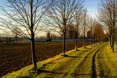 Weg door legering door bruin gebied op manier tot Praag wordt geleid in de Herfst die royalty-vrije stock fotografie