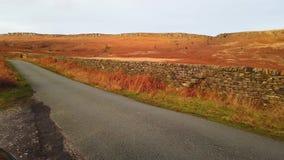 Weg door Piekdistricts Nationaal Park in Engeland stock footage