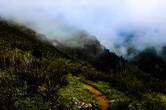 Weg durch den Nebel lizenzfreie stockfotos