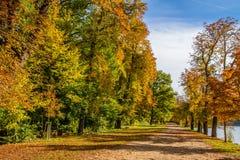 Weg durch den Park im Herbst mit farbigen Bäumen Stockfotografie