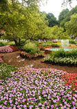 Weg durch die Blumen stockbild