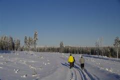 Weg durch ein schwedisches Wintermärchenland stockfoto