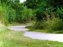 Weg durch Grün stockbilder