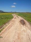 Weg en landschap Royalty-vrije Stock Afbeelding