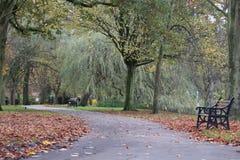 Weg in een lokaal park Royalty-vrije Stock Foto's