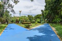 Weg in een mooi park Royalty-vrije Stock Fotografie