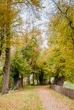 Weg in een park in Nederland bij de Herfst Stock Foto's
