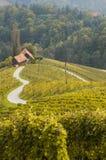 Weg in een vorm van een hart, Maribor, Slovenië Stock Foto's