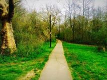 Weg in einem Park stockbild