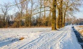 Weg in einer winterlichen ländlichen Landschaft Stockfotos