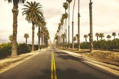 Weg en bomen in de horizon stock foto's