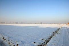 Weg en gebied in de winter Royalty-vrije Stock Foto
