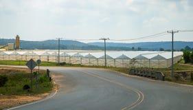 Weg en landbouwbedrijfplattelandslandschap Broeikas voor installaties en groenten de groei stock fotografie