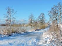 Weg en mooie de winterbomen, Litouwen Stock Fotografie