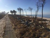 Weg entlang baltischer Küste Lizenzfreie Stockbilder