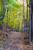 Weg entlang dem Berg lizenzfreie stockfotos