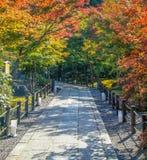 Weg entlang Eikando-Tempel stockbilder