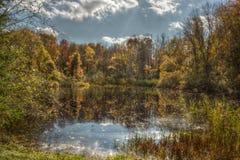 Weg fallen Blätter sind im Wasser Stockbilder