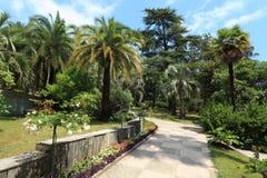 Weg in het arboretum van Sotchi stock afbeelding