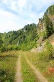 Weg in het bergen groene bos stock foto's
