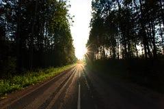 Weg in het bos Royalty-vrije Stock Foto