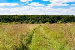 Weg in het bos en de hemel Stock Foto's
