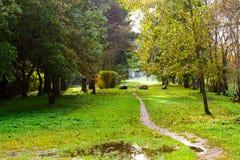 Weg in het de herfstpark Stock Afbeelding