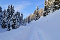 Weg in het de Winterbos in de Ural-Bergen, Rusland, Chelyabinsk-gebied, Minyar Pushkin` s fee tal Stock Afbeeldingen