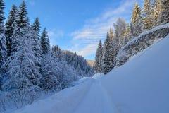 Weg in het de Winterbos in de Ural-Bergen, Rusland, Chelyabinsk-gebied, Minyar Pushkin` s fee tal Stock Foto