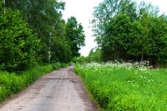 Weg in het dorp Royalty-vrije Stock Foto